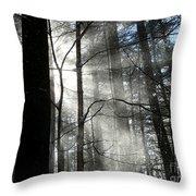 Wondrous Light Throw Pillow by Avis  Noelle