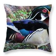 Wood Duck Throw Pillow by Cynthia Guinn
