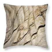 Wood Grain Grunge And Texture Throw Pillow by Hermanus A Alberts