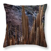 Wood Shreds Throw Pillow by Murray Bloom