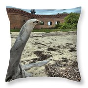Wooden Seal Throw Pillow by Adam Jewell