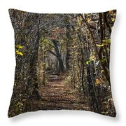 Woodland Path Throw Pillow by John Greim