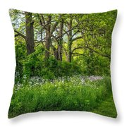 Woodland Phlox Throw Pillow by Steve Harrington