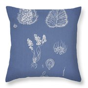 Woodsia lanosa Throw Pillow by Aged Pixel