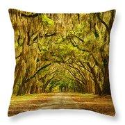 Wormsloe Plantation Oaks Throw Pillow by Priscilla Burgers