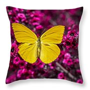 Yellow Butterfly Throw Pillow by Garry Gay