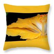 Yellow Hibiscus. Detail Throw Pillow by Ben and Raisa Gertsberg
