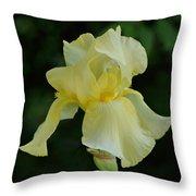 Yellow Iris Throw Pillow by Sandy Keeton