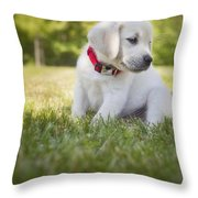 Yellow Lab Puppy In The Grass Throw Pillow by Diane Diederich