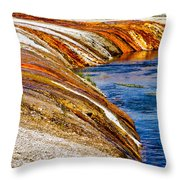 Yellowstone Earthtones Throw Pillow by Bill Gallagher