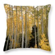 Young Aspens Throw Pillow by Eric Glaser