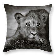 Young Lion Portrait Throw Pillow by Johan Swanepoel