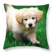 You're Only Young Once Throw Pillow by Christina Rollo