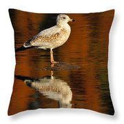 Youthful Reflections Throw Pillow by Tony Beck