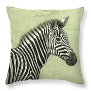 Zebra Throw Pillow by James W Johnson