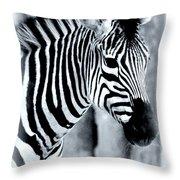 Zebra Throw Pillow by Kathleen Struckle