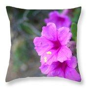 Arizona Wildflower Throw Pillow by Sharon Mick