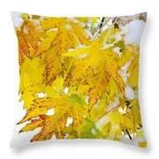 Autumn Snow Portrait Throw Pillow by James BO  Insogna