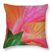 Hibiscus Throw Pillow by Kathy Yates