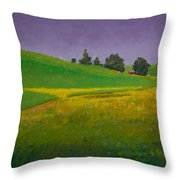 A Sliver Of Canola Throw Pillow by David Patterson