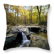 A Woodland View At Long Branch Nature Throw Pillow by Rex A. Stucky