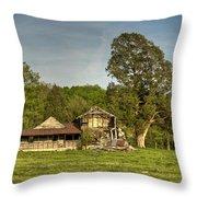 Abandoned Collapsed Farm House Throw Pillow by Douglas Barnett