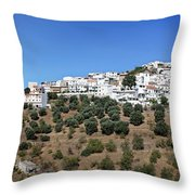 Albondon Pano Throw Pillow by Jane Rix