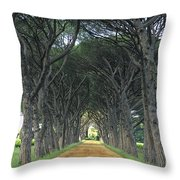 Alley . Provence Throw Pillow by Bernard Jaubert