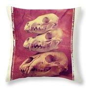 Animal Skulls Throw Pillow by Garry Gay