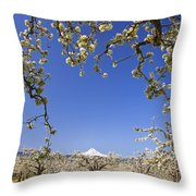 Apple Blossom Trees In Hood River Throw Pillow by Craig Tuttle