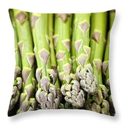 Asparagus Throw Pillow by Elena Elisseeva