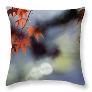 Autumn Red  Throw Pillow by Rob Travis