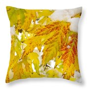 Autumn Snow  Throw Pillow by James BO  Insogna