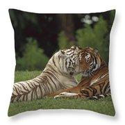 Bengal Tiger Panthera Tigris Tigris Throw Pillow by Konrad Wothe