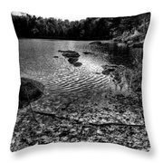 Cary Lake After The Storm Throw Pillow by David Patterson