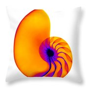 Chambered Nautilus Shell Throw Pillow by Ted Kinsman