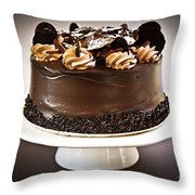 Chocolate Cake Throw Pillow by Elena Elisseeva