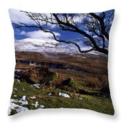 Comeragh Mountains, County Waterford Throw Pillow by Richard Cummins