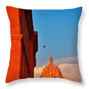 Corona Throw Pillow by Skip Hunt