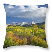 East Beckwith Mountain Flanked By Fall Throw Pillow by Tim Fitzharris