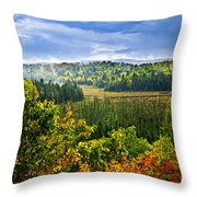 Fall Forest Rain Storm Throw Pillow by Elena Elisseeva