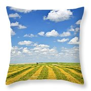 Farm Field At Harvest In Saskatchewan Throw Pillow by Elena Elisseeva