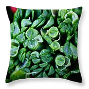 Fresh Chives Throw Pillow by Susan Herber