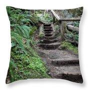 Going Up Throw Pillow by Carol Groenen