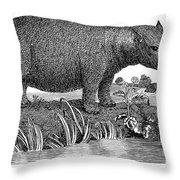 Hippopotamus Throw Pillow by Granger
