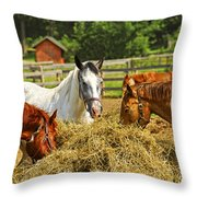 Horses At The Ranch Throw Pillow by Elena Elisseeva