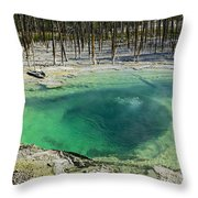 Hot Springs Yellowstone National Park Throw Pillow by Garry Gay