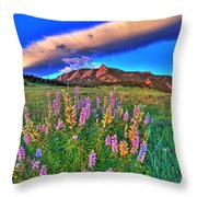 In The Moment Throw Pillow by Scott Mahon