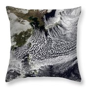 January 2, 2009 - Cloud Simulation Throw Pillow by Stocktrek Images
