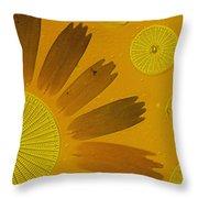 Microscopic Arrangement Throw Pillow by Darlyne A. Murawski